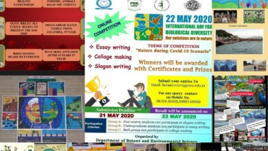 World University organises National level online competitions