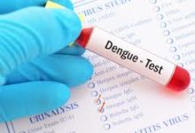 Punjab gets one more testing lab for Dengue- photo courtesy-internet